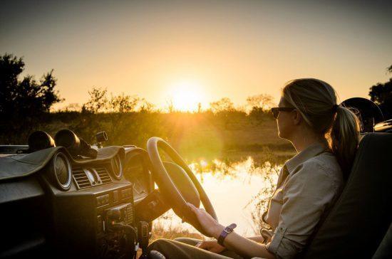 Jeune femme conduisant une voiture de safari au soleil levant dans la brousse.
