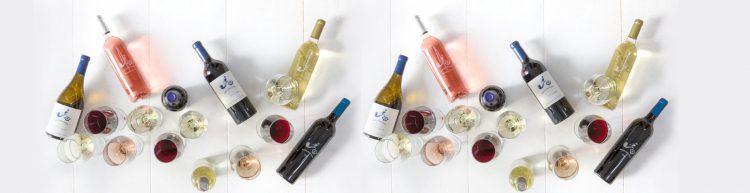 Variedad de vinos para disfrutar