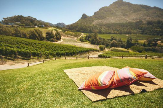 Sitting on the lawn at Constantia Glen