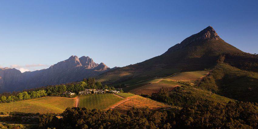 Los viñedos del Cabo: el mejor lugar para catar vino