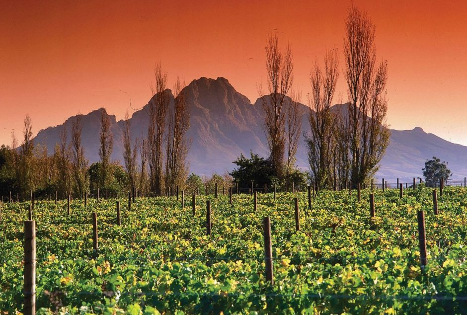 Romantic sunset in Franschhoek in the Cape Winelands