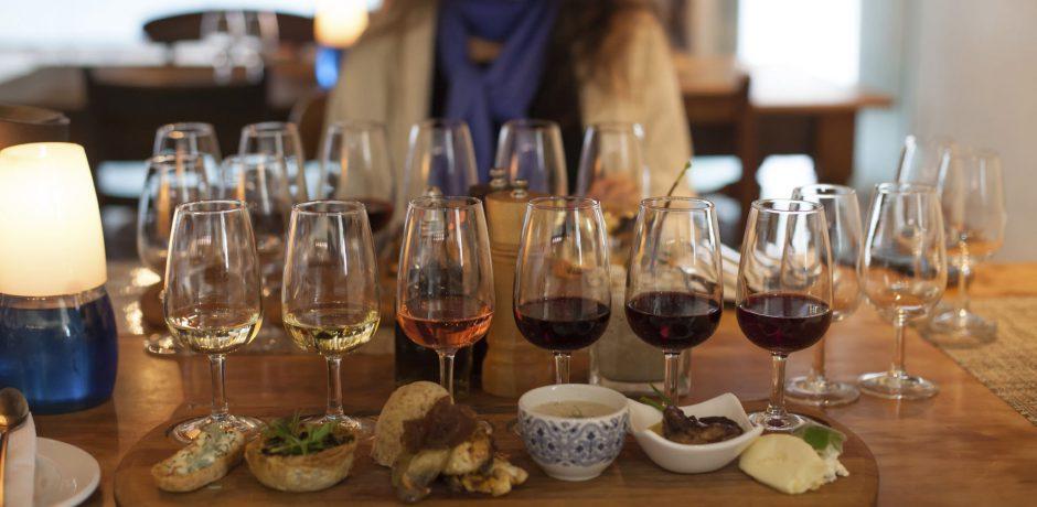 Cata de vinos en Cape Winelands