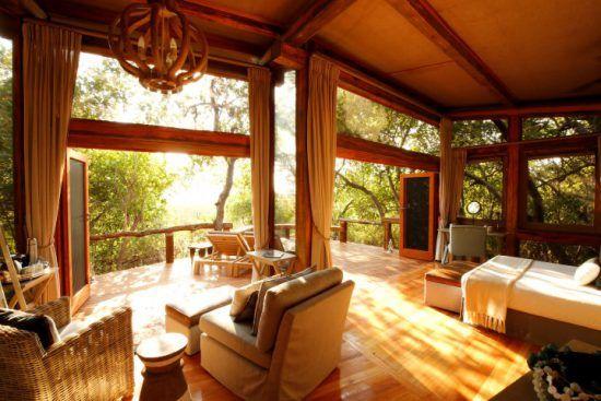 Eine von Licht durchflutete Wohneinheit im Camp Okavango mit Blick auf die grüne Natur