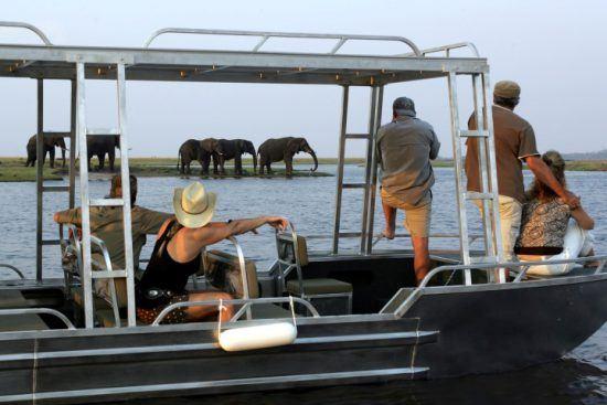 Mehrere Personen beobachten während einer Bootsfahrt eine Herde Elefanten am Flussufer