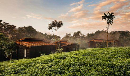 Die Lodge One&Only Nyungwe House im Dschungel von Ruanda