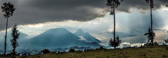 Panorama of the Volcanoes National Park in Rwanda, East Africa