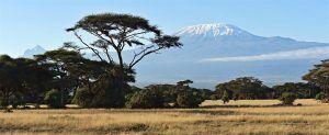 S'émouvoir devant le Kilimanjaro à la frontière tanzanienne lors d'un voyage au Kenya.