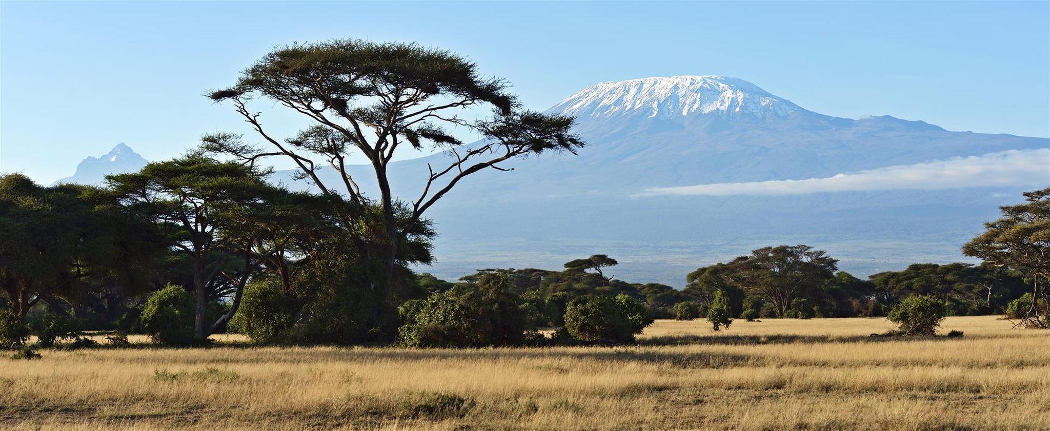 Vistas panorámicas con el Kilimanjaro