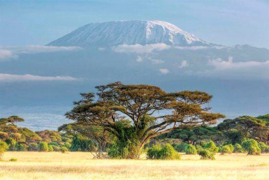 Panorama vom schneebedeckten Kilimandscharo