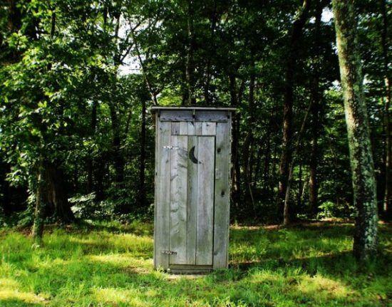 Eine Toilette mitten im grünen Wald