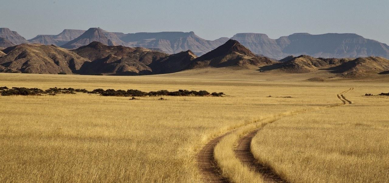 Dünen und trockene Graslandschaft mit Bergen im Hintergrund im namibischen Damaraland