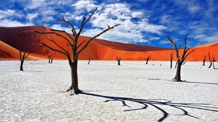 Dunes de sable rouge et désert de sable blanc en Namibie à Sossusvlei.