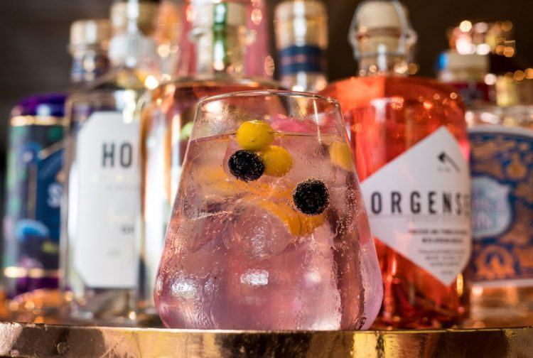 Gin Tonic au bar de Silvan