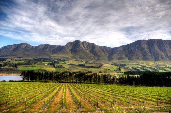 Vista dos vinhedos de Stellenbosch nas Vinhas do Cabo, África do Sul