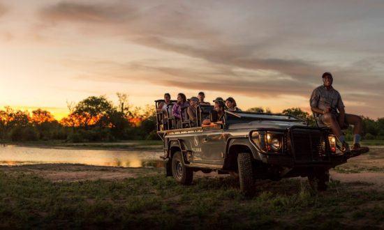 Safari in Silvan