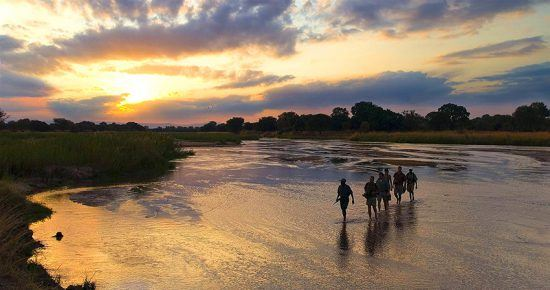 Safári a pé em Hwange, no Zimbábue
