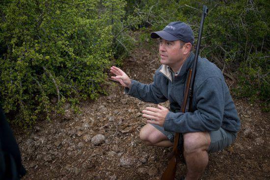 Guia explica aspectos da fauna e flora durante safári a pé