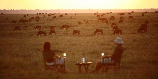 Eine Frau und ein Mann sitzen auf Sesseln, inmitten ein Tisch, vor vielen Tieren