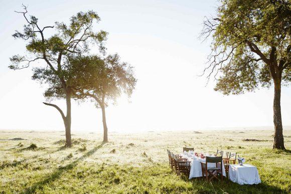 Una mesa y sillones están en la sabana.