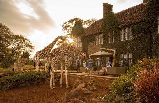 You can share your breakfast with giraffe at this gorgeous manor estate