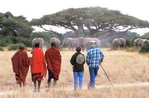 Guides maasai lors d'un safari au Kenya