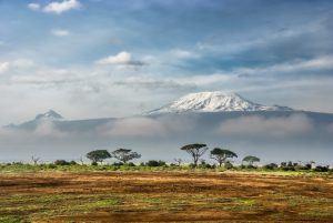 Blick auf den schneebedeckten Kilimanjaro in Tansania