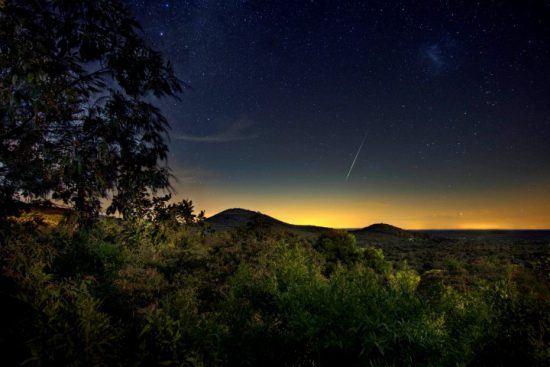 Der Sternenhimmel über dem afrikanischen Busch wird immer klarer - auf Nacht-Safari in Afrika