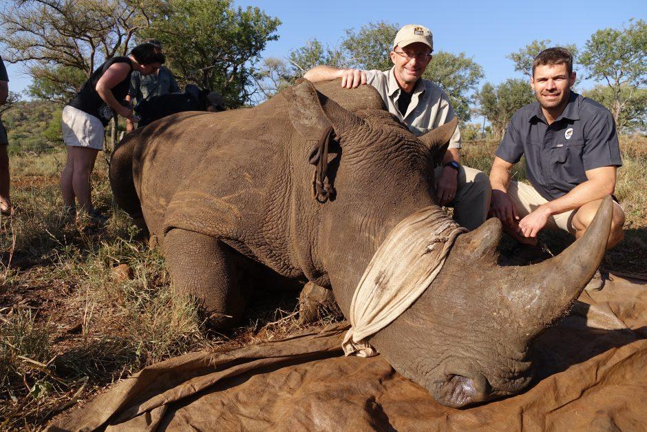 Wildlife ACT in Aktion: Nashorn-Enthornung in KwaZulu-Natal