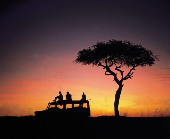 Un vehículo todoterreno y un árbol, detrás de él una puesta de sol amarilla.