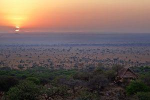 Serengeti National Park at sunset