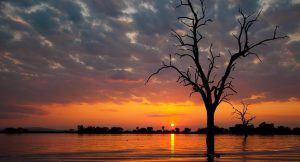 Coucher de soleil au Parc National de Selous, Tanzanie