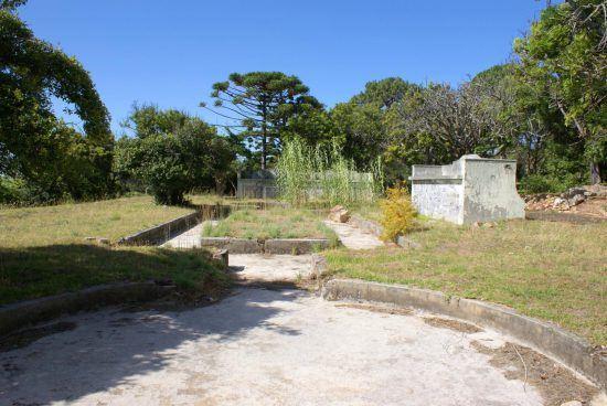 Ein rundes, leeres Becken umgeben von Wiese, dahinter Bäume