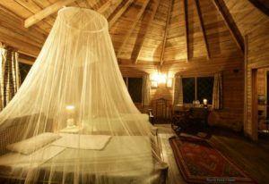 Zimmer der Jacana Safari Lodge