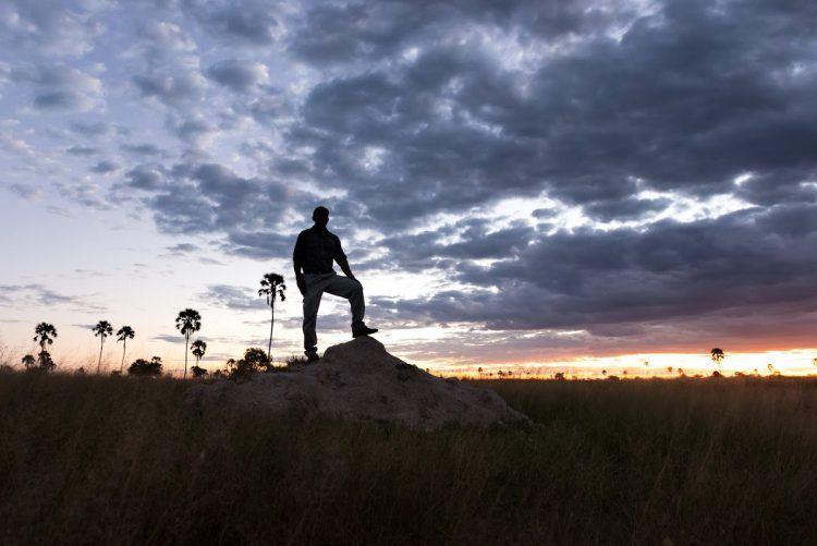 Guide safari au coucher de soleil, héro des plus beaux clichés de Simon durant son safari photo au Zimbabwe