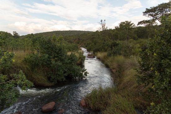 Cenários arrebatadores farão parte da sua experiência na Reserva Welgevonden. Foto: Rhino Africa