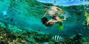 vacances à l'île maurice : snorkelling/tuba