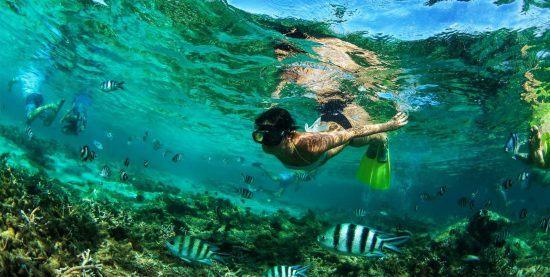 Beste Reisezeit für Mauritius: Eine Frau beim Schnorcheln im Meer