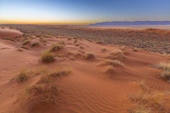The Kalahari Desert
