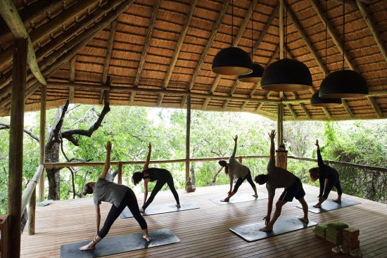 Campements du Parc Kruger | Plateforme de yoga à Londolozi