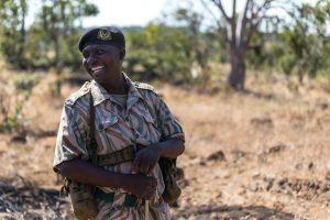 Um dos guias do seu próximo safári na África