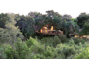 Lodge principal de Londolozi Varty Camp, où se situe la Healing House