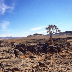 Amanzi River Trails on Namibian trek