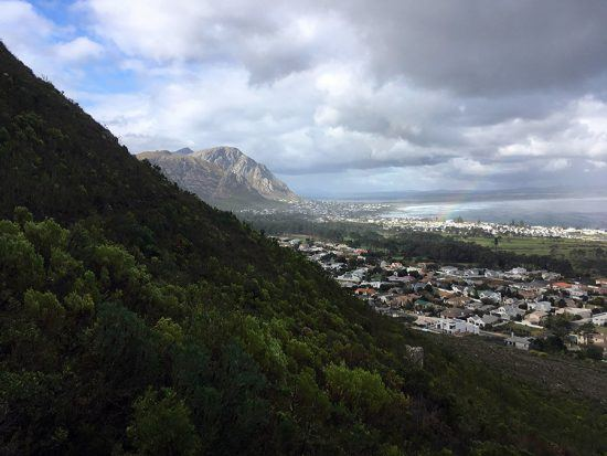 Hermanus vista da Reserva Natural Fernkloof. Foto: Nathalia Marangoni