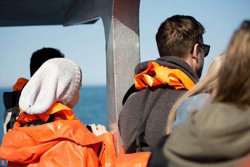 Auf Bootstour vor der Küste Südafrikas
