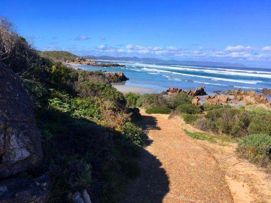 Cliff Path Walk leva visitantes a praias maravilhosas. Foto: Nathalia Marangoni