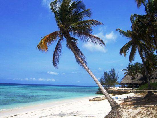 El paraíso natural de Zanzíbar