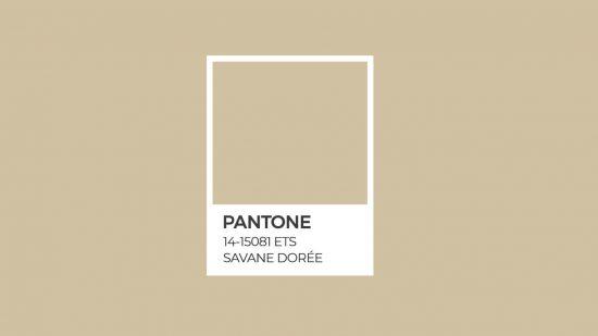 Etosha Pantone série