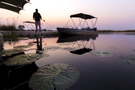 Passeios de barco e mokoro são maneiras imersivas de contemplar a natureza na região
