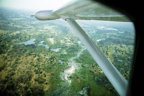 Blick aus einem Kleinflugzeug aufs wasserreiche Okavango Delta