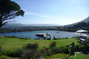 outside-view-of-cape-point-vineyards-cape-town-south-africa